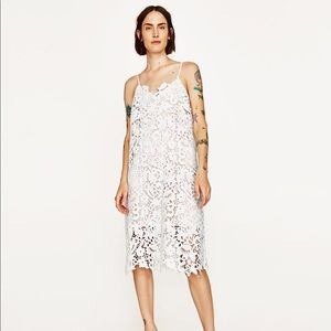 New Zara White Lace Shift Dress
