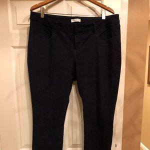 Jeans - Coldwater Creek Modern Fit 16P