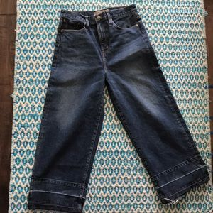 J. Crew // Point Sur culotte jean in size 29