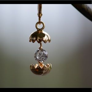 18K Gold Plated Eggshell Zircon AAA Earrings