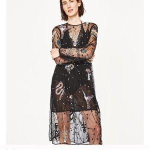 Zara Embroidered Tulle midi dress