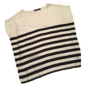 The Limited sheer striped dress shirt