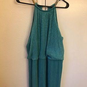 Dresses & Skirts - Size 18 w floor length dress