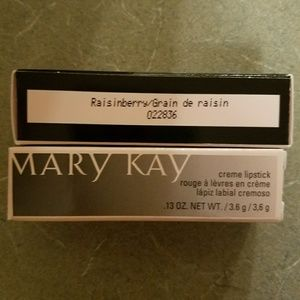 Mary Kay Raisinberry lipstick