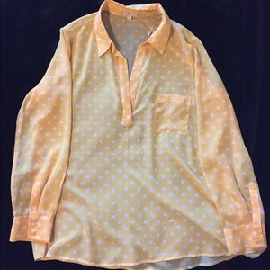 Nordstrom Pleione see through blouse size Large