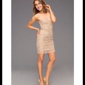 BCBG Maxazria Abigail Champagne Mesh Dress 12