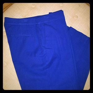 Cobalt blue capri
