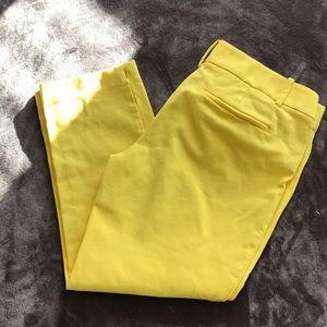 Loft The Rivera Pant in Lemon Yellow