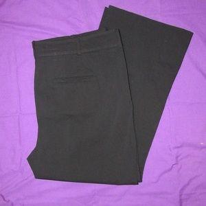 Lane Bryant dress pants. Plus size