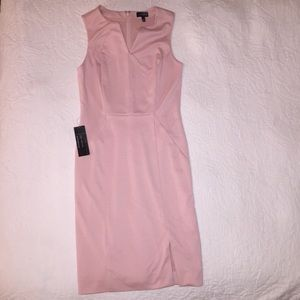 New with tags! Gorgeous Blush Dress!