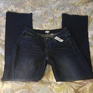 J Crew Stretch Denim Mid Rise Bootcut Jeans NWT 27