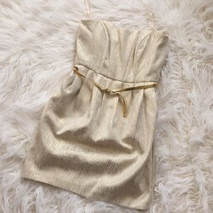 Cream and gold belted strapless dress
