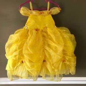 Cinderella Couture Dress