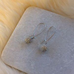 Touchstone Crystal Drop Earrings