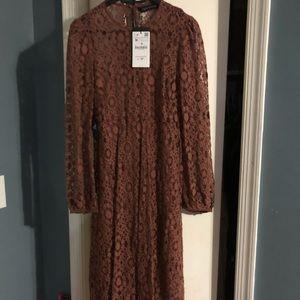 Zara brown lace dress