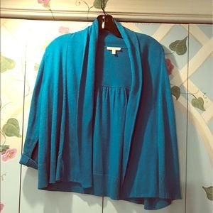 Blue Eileen Fisher cardigan