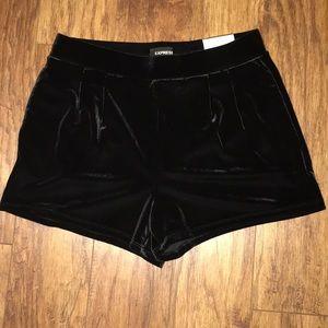 Express Velvet Shorts