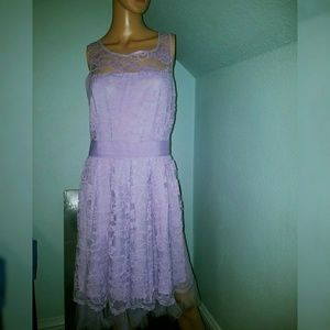 BB Dakota purple lace plus size dress modcloth  16