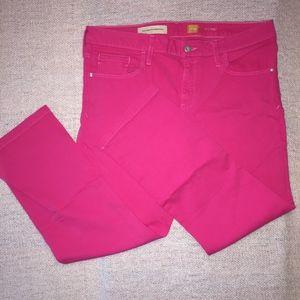 ANTHROPOLOGIE stet bright pink crop pant/NWT/32