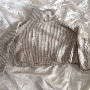 Zara Cropped Sweater Turtleneck