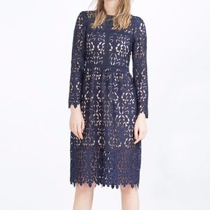 629170119a97 Zara Dresses | Navy Blue Lace Knee Length Long Sleeve Dress | Poshmark