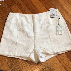 NWT lace white high waisted shorts