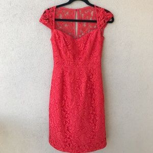 J. Crew Poppy Tinsley Dress in Leavers Lace