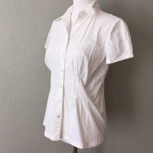 Ann Taylor LOFT Professional Button Up Blouse