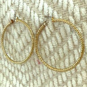 Sparkly Gold Hoop Earrings