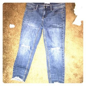 Free People ripped Capris