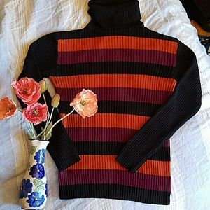 Perfect Fall Winter Ribbed Turtle Neck