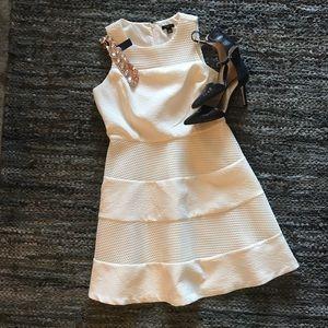 🆕 listing!  Ann Taylor Mesh Fit & Flare Dress 4P