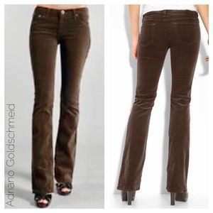 AG-The Angel Bootcut Corduroy boot cut brown