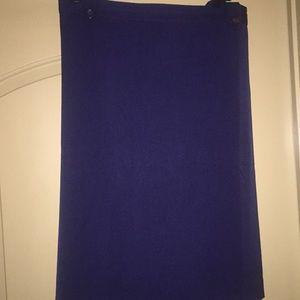 Plus Size Navy Skirt by Glamorosa