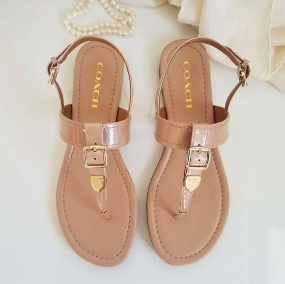 Coach Rubber T-Strap Sandals clearance browse free shipping nicekicks cheap buy authentic Abe5FN19Qb