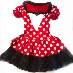 Disney's Minnie Mouse Costume