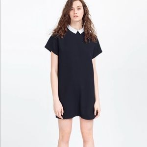 Zara black staring dress with white collar