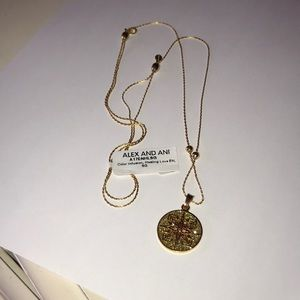 Alex and ani Healing love necklace