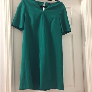 Mod Green A-line Dress from the Limited