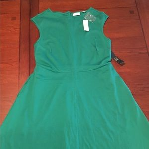 New York & Company Green Fit N Flare Dress