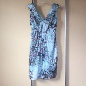 Dragonfly Print Dress by Ted Baker London