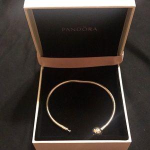 Pandora bracelet with pandora box