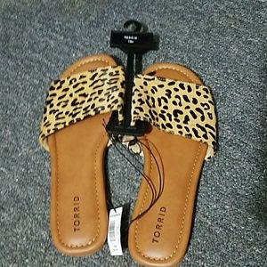 Cute Leopard Slides