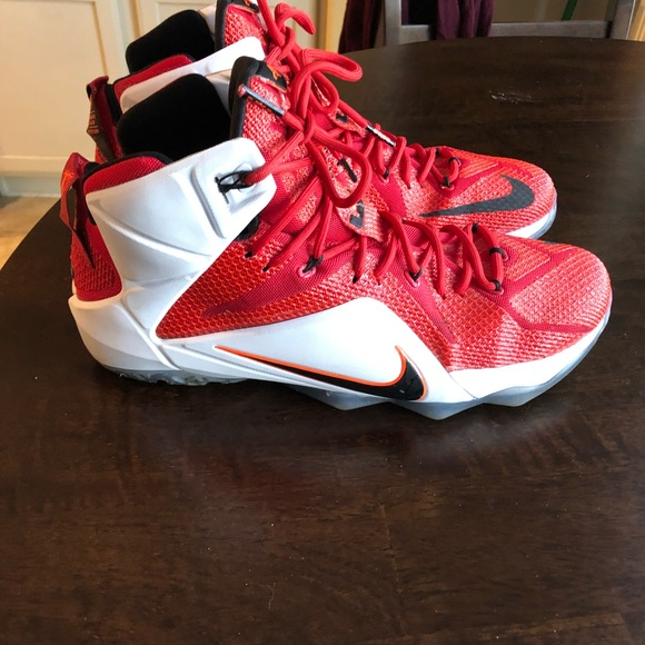 LeBron VII 'Heart of a Lion' Size 13