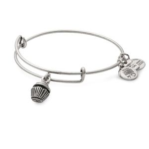 NWT Alex and Ani Cupcake Braclet