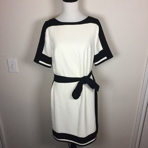 Ann Taylor Belted Shift Dress