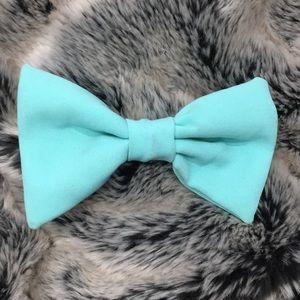 Aqua AA hair bow