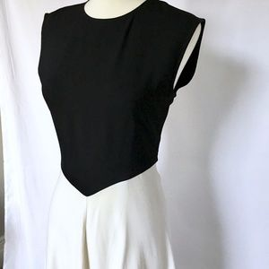 Zara Dresses - Zara Colorblock Dress