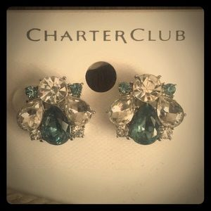 NWT Stunning Blue and Clear Crystal Stud Earrings