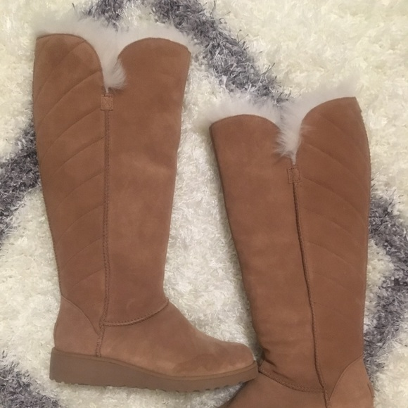 0ad2d4db164 Ugg Rosalind tall boot in chestnut